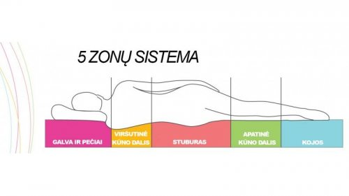 5 zonu ciuzinys