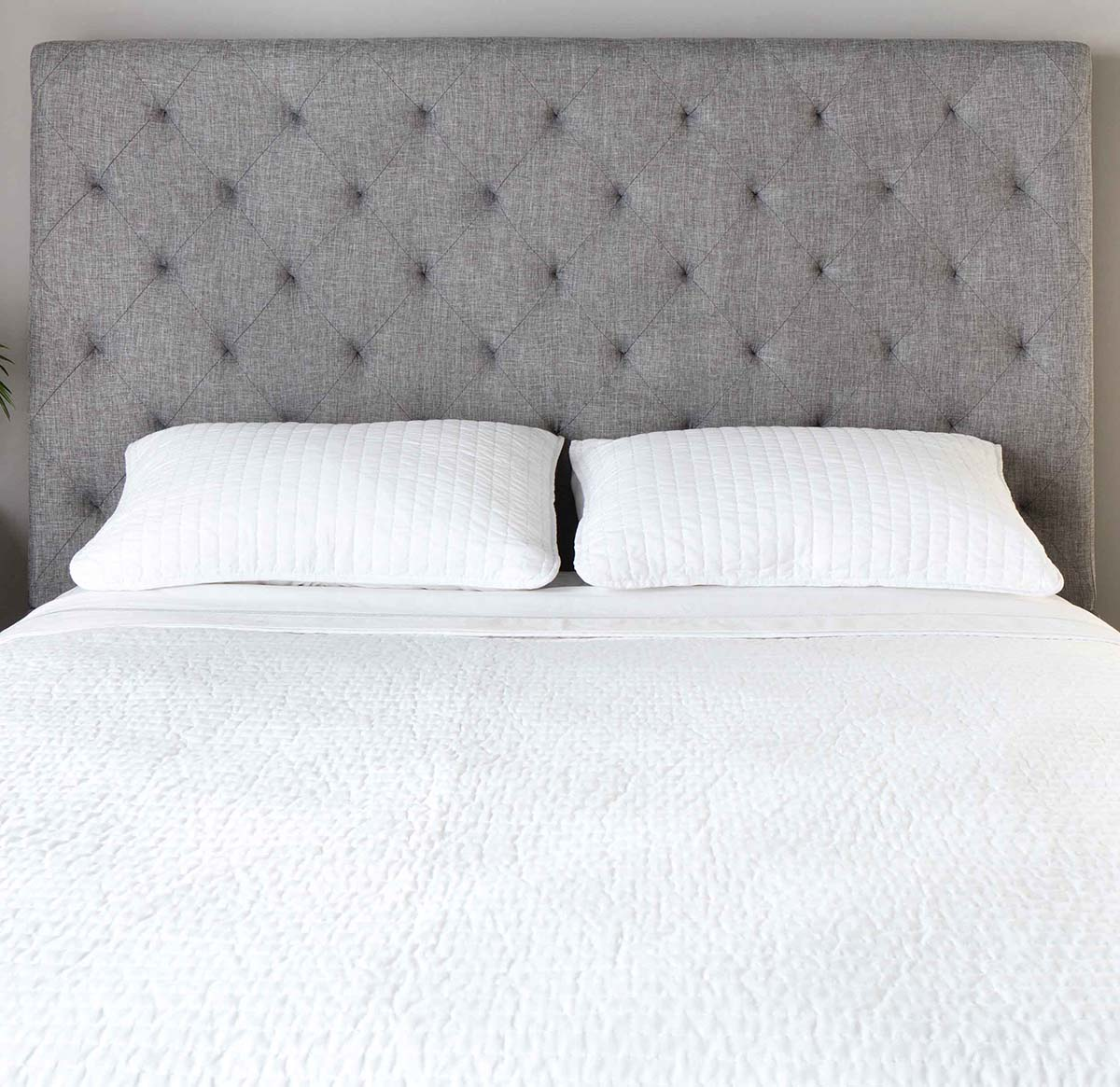 Pilkos, klasikines dvigules lovos Domino galvugalis