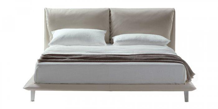 Pilka-dvigule-lova-Savana-priekis